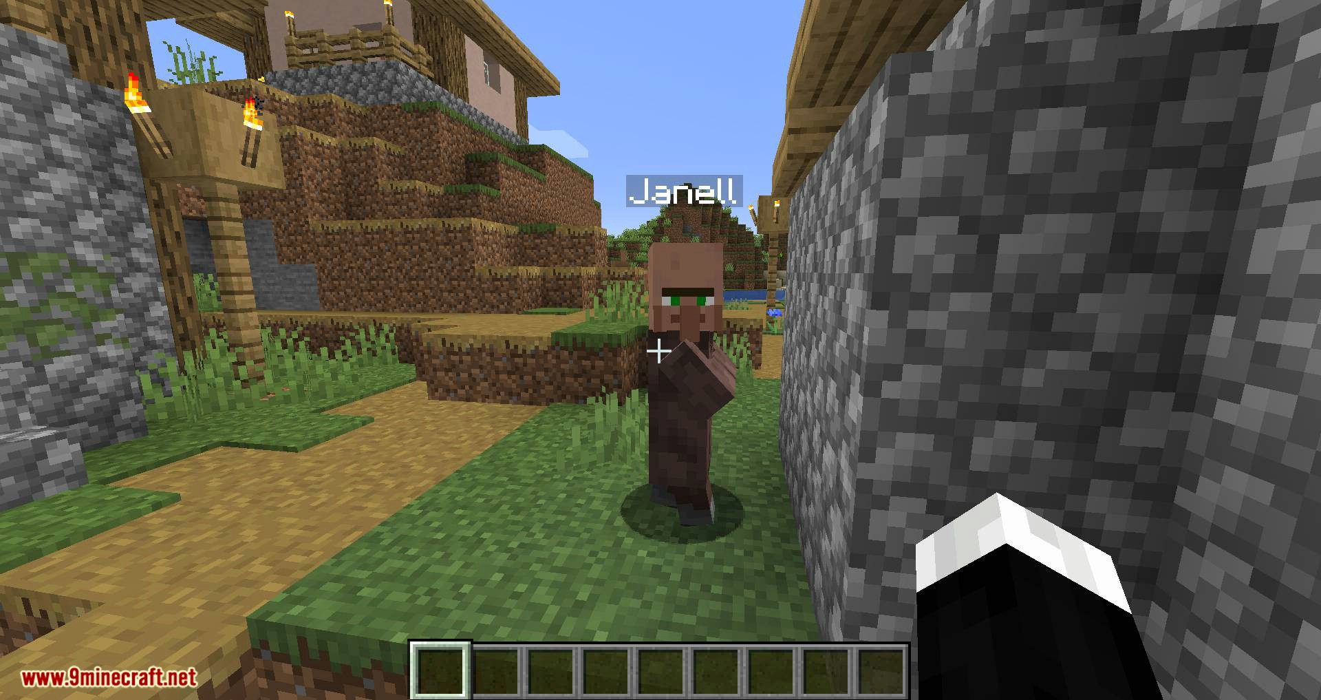 Villager Names mod for minecraft 04
