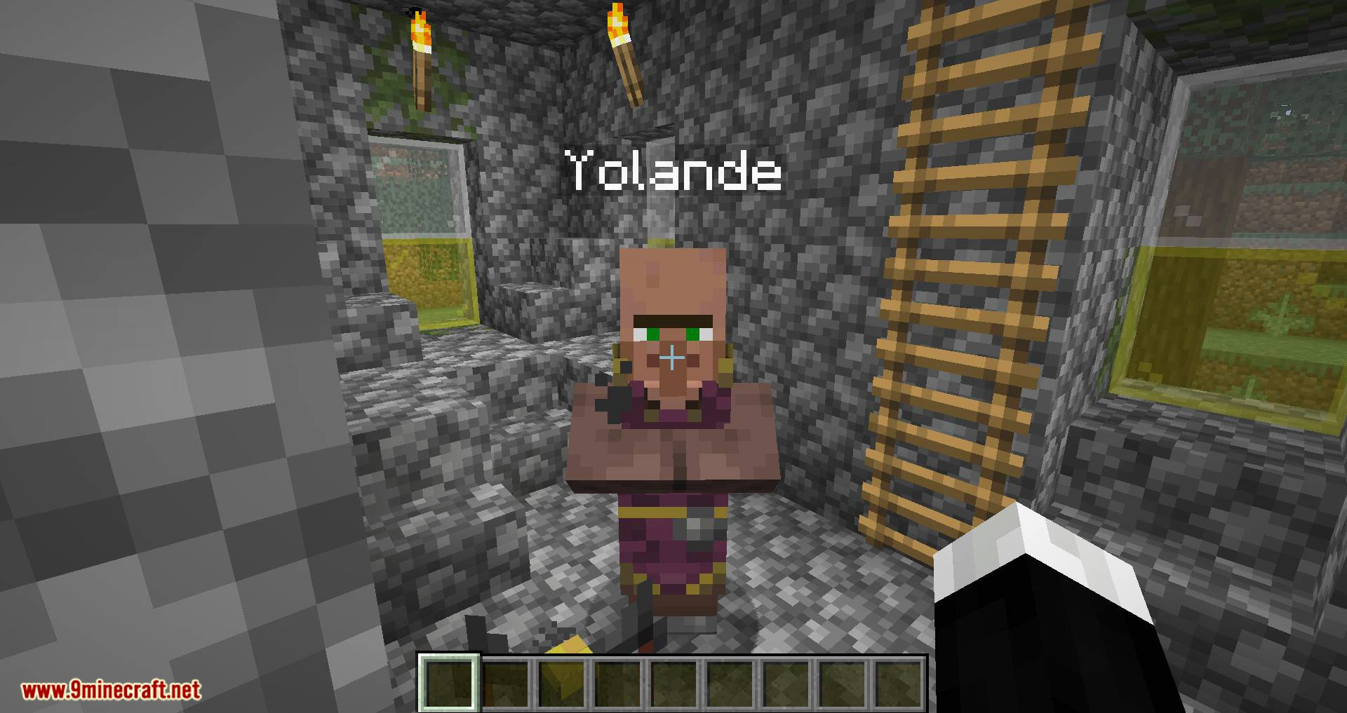 Villager Names mod for minecraft 07