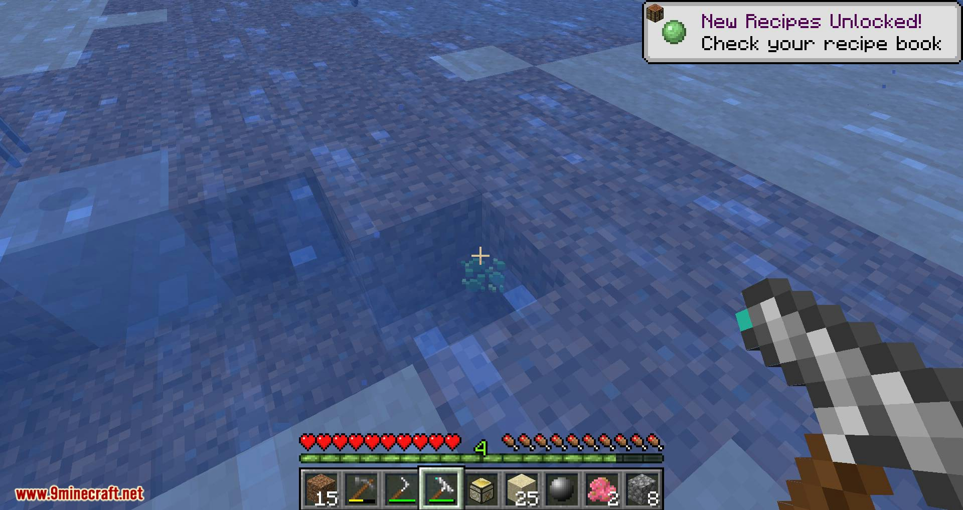 Dooglamoo Jr. Archaeology mod for minecraft 09