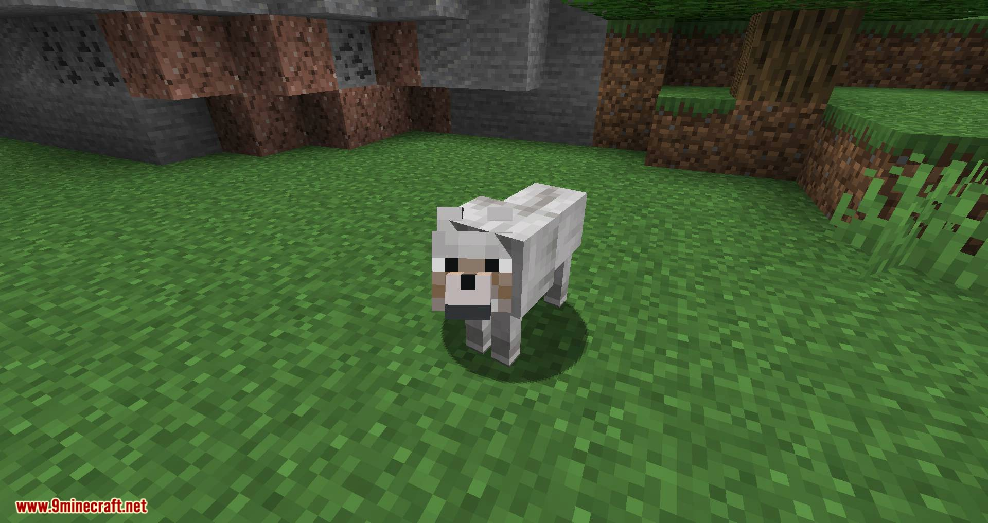 Pet Your Wolf mod for minecraft 01