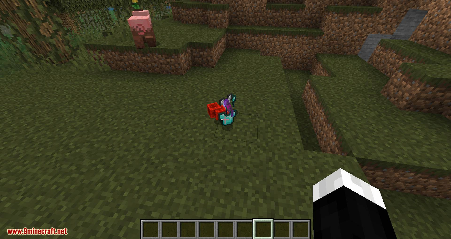 Pick Up Notifier mod for minecraft 02