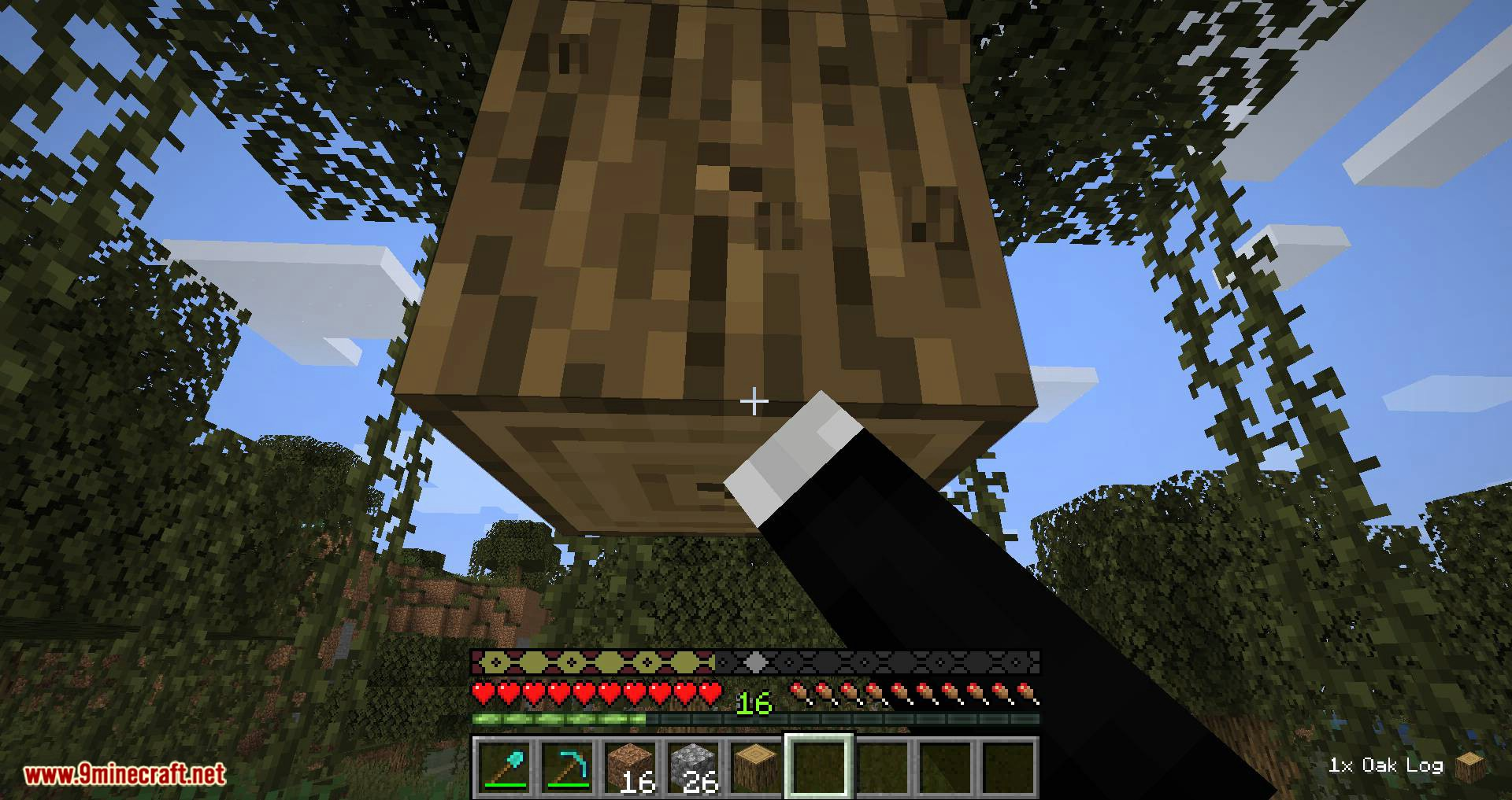 Pick Up Notifier mod for minecraft 10