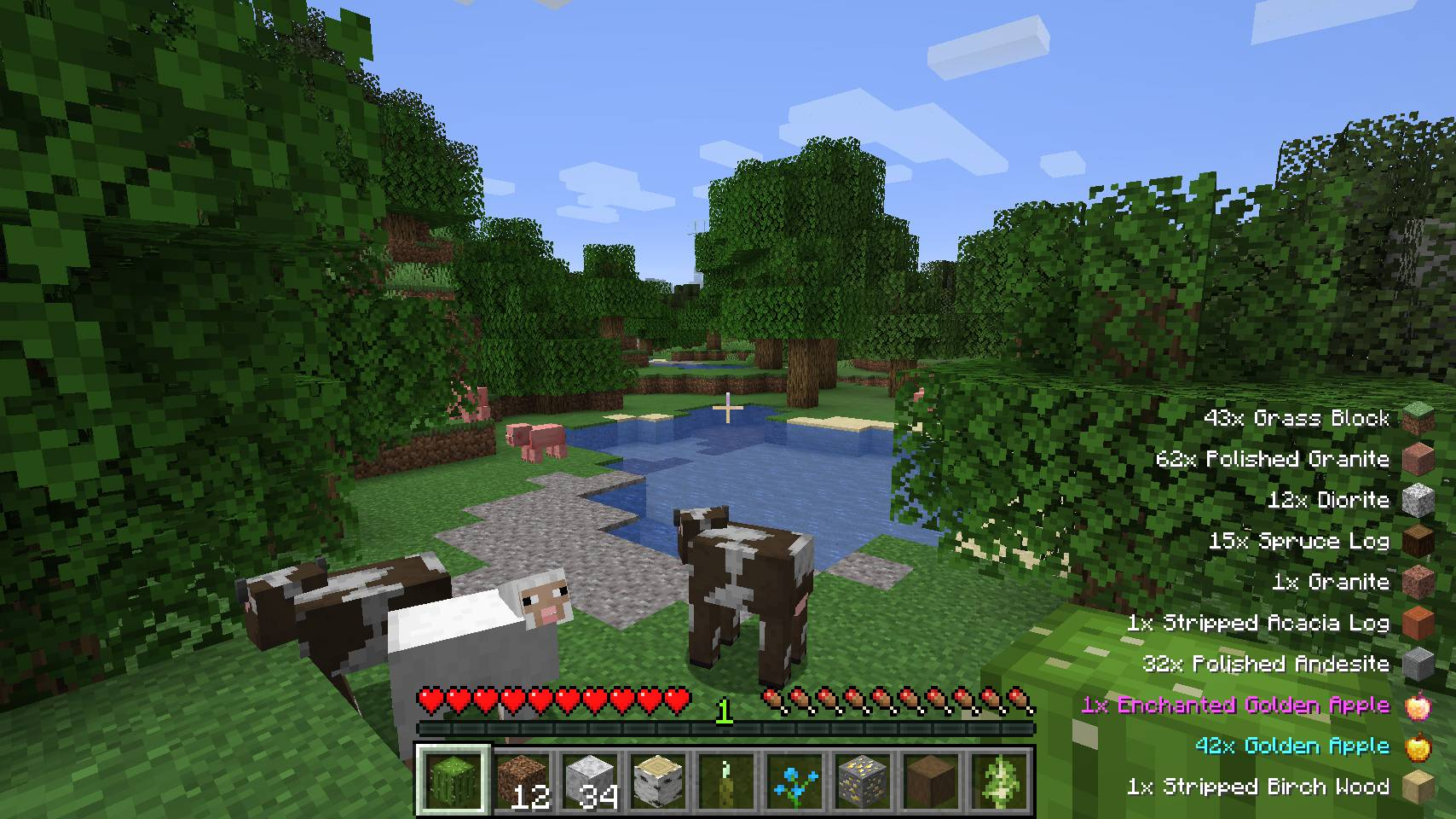 Pick Up Notifier mod for minecraft 21