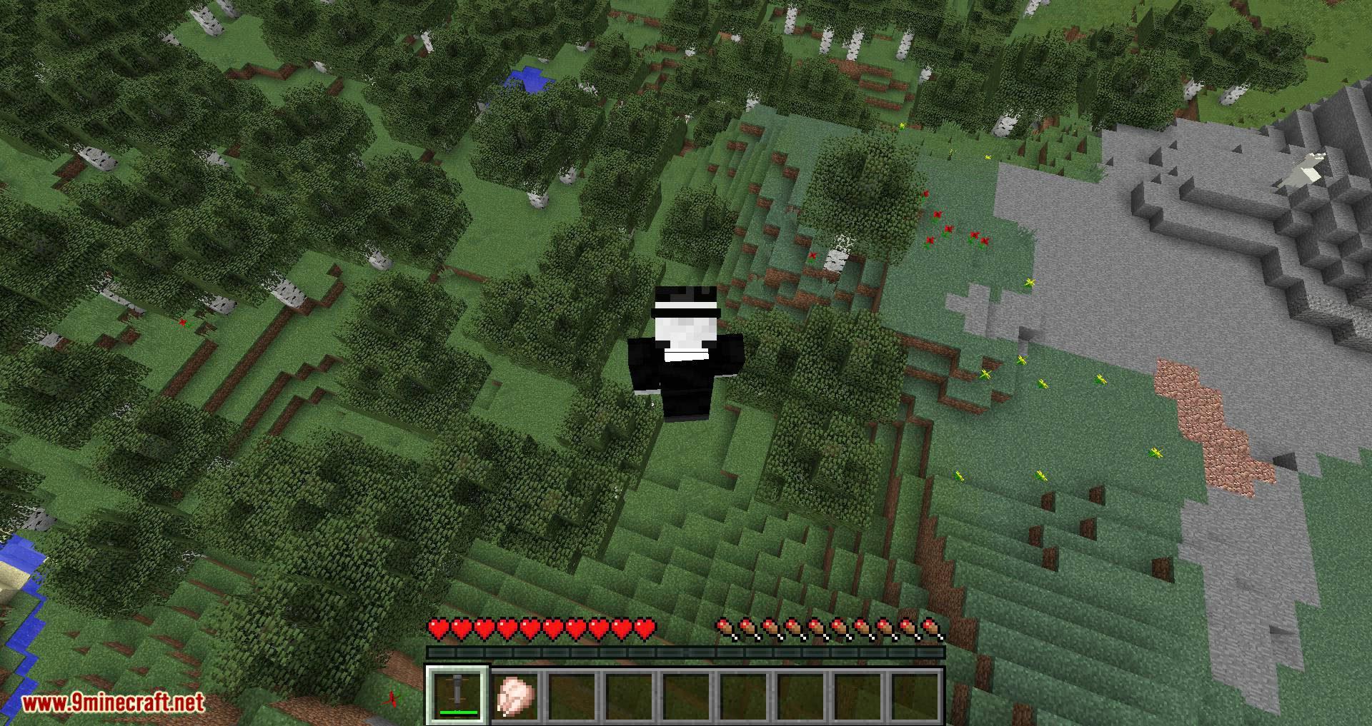 Pogo Sticks mod for minecraft 09