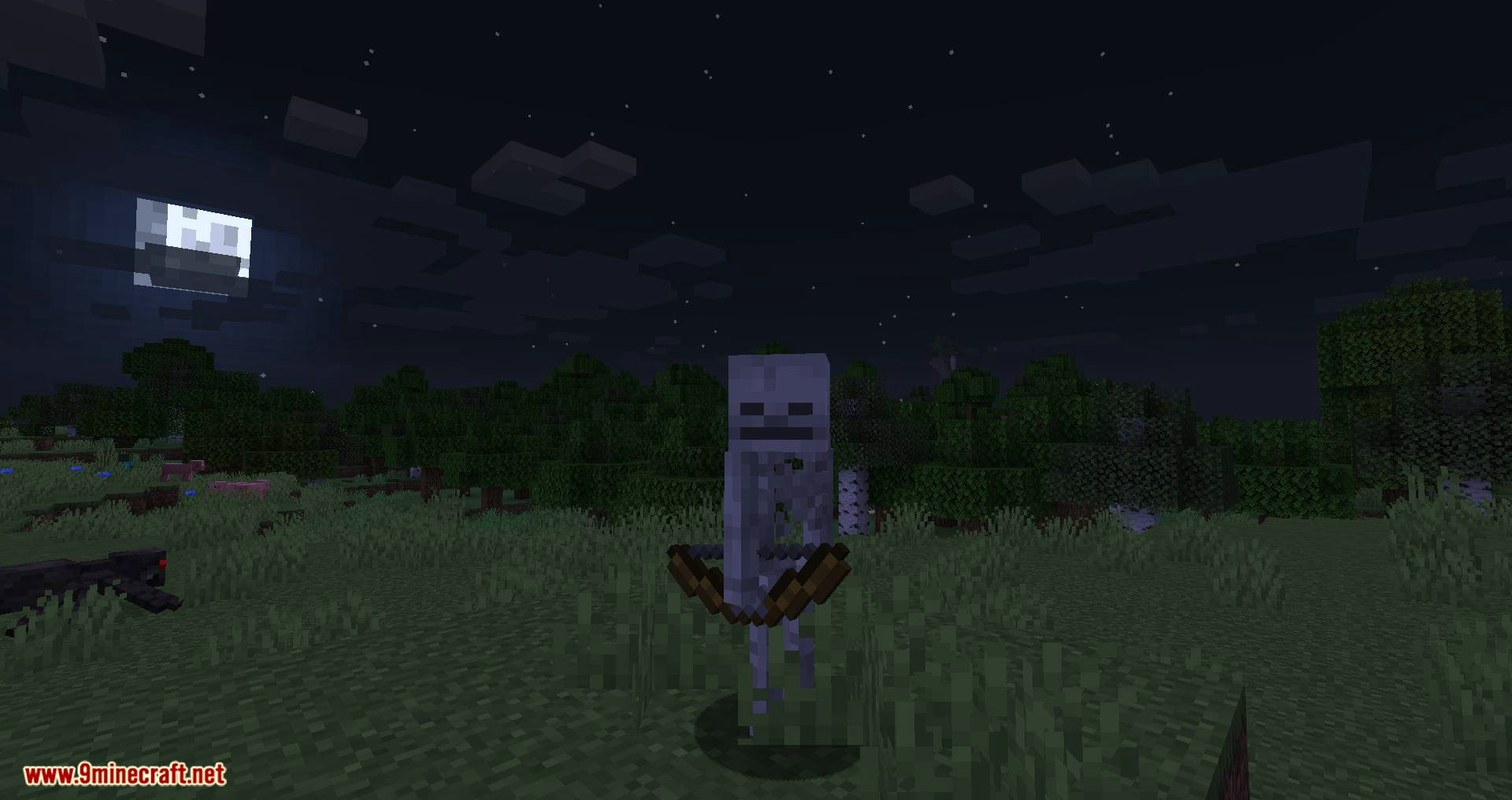 Stray Spawn mod for minecraft 02