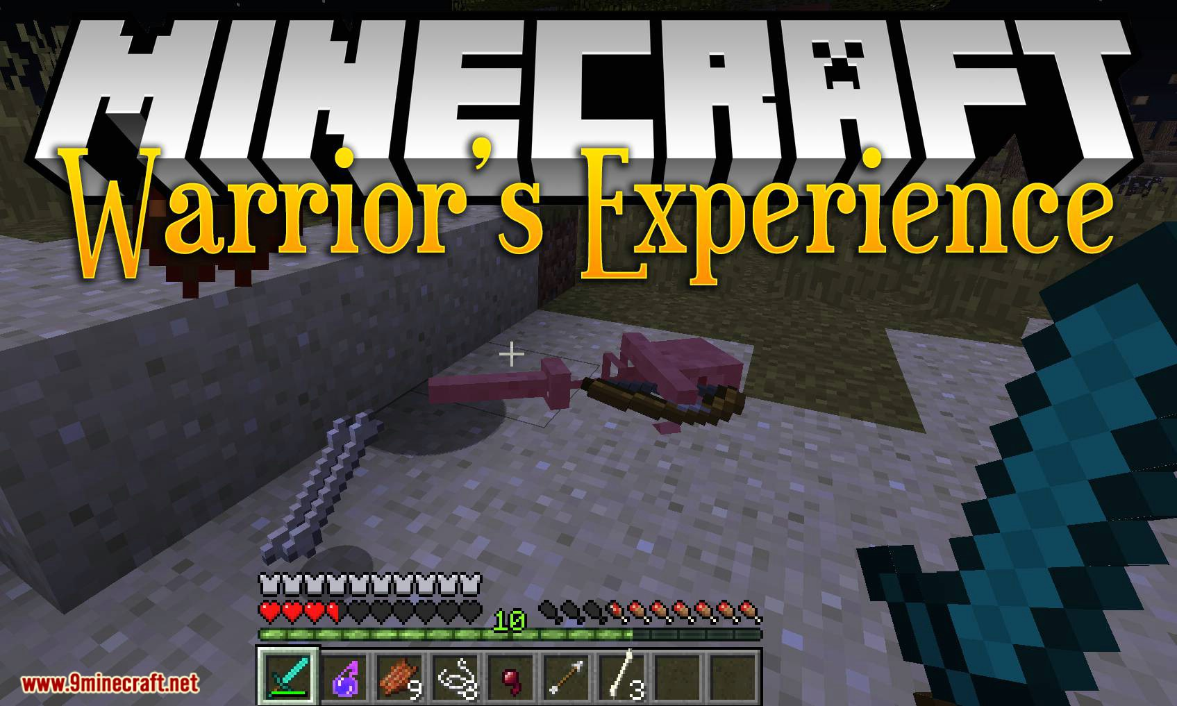 Warrior_s Experience mod for minecraft logo