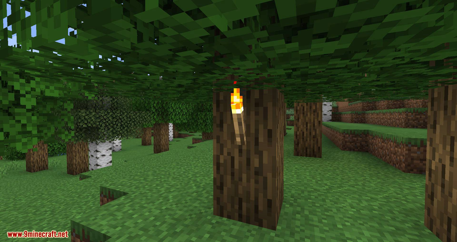 Campfire Torches mod for minecraft 02
