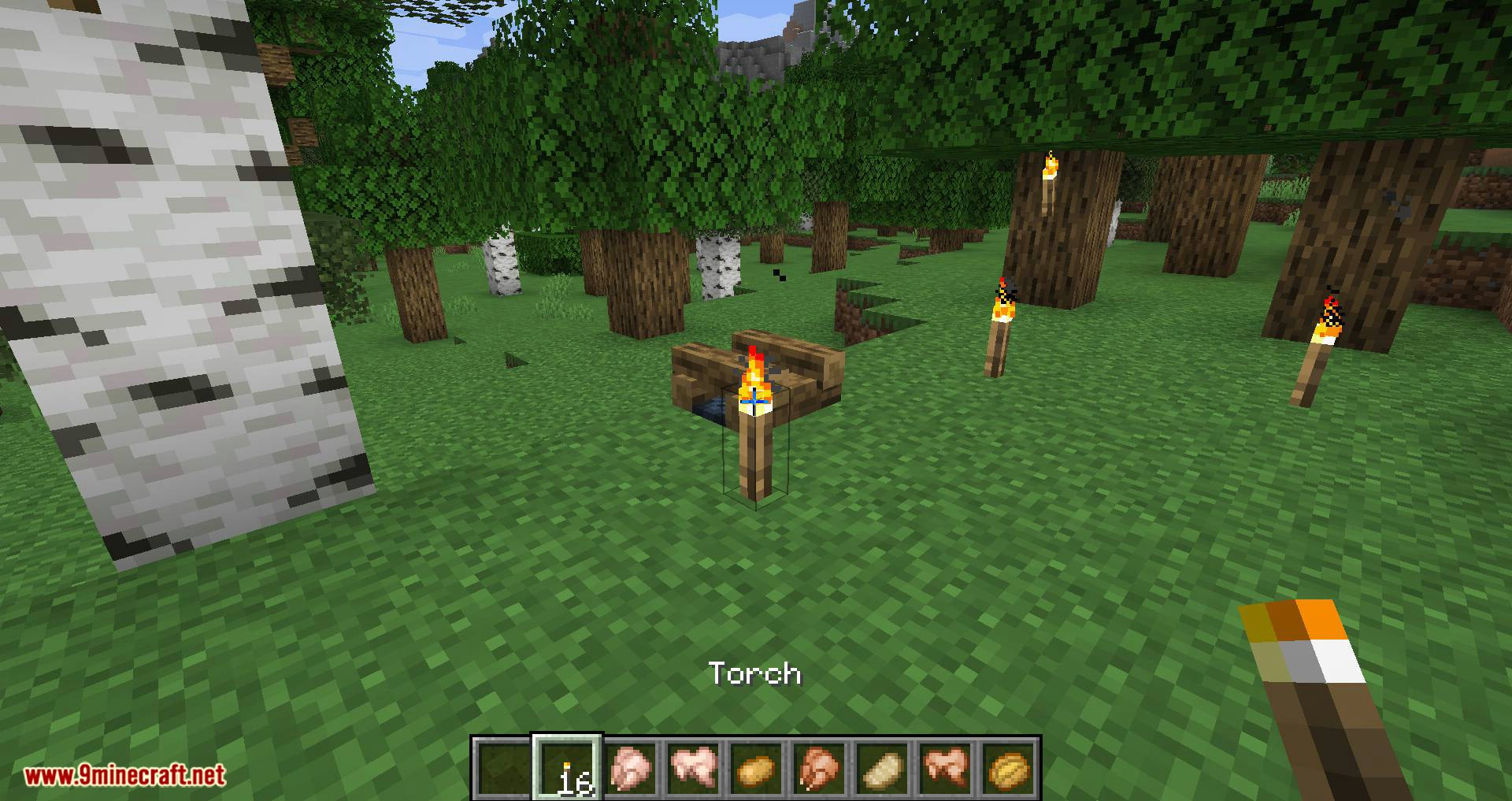Campfire Torches mod for minecraft 10