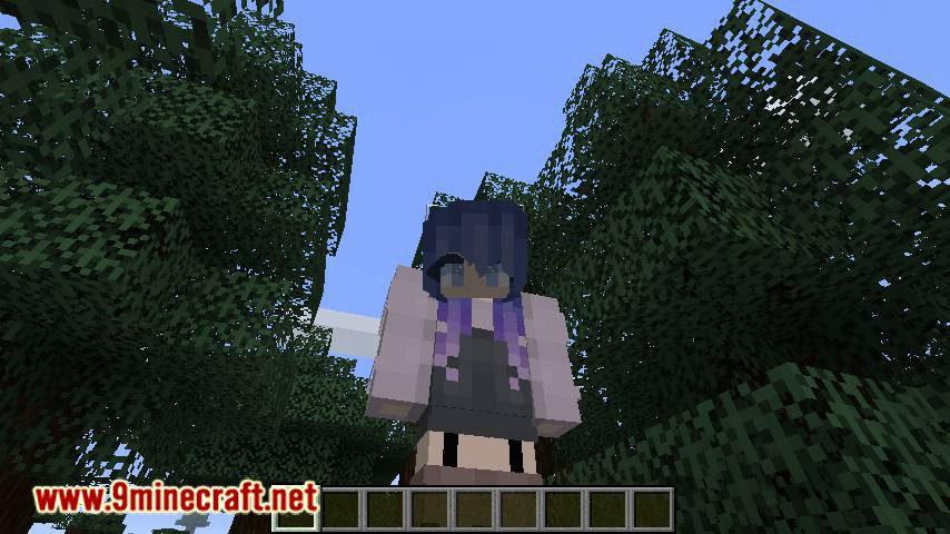Custom Skin Loader mod for minecraft 08