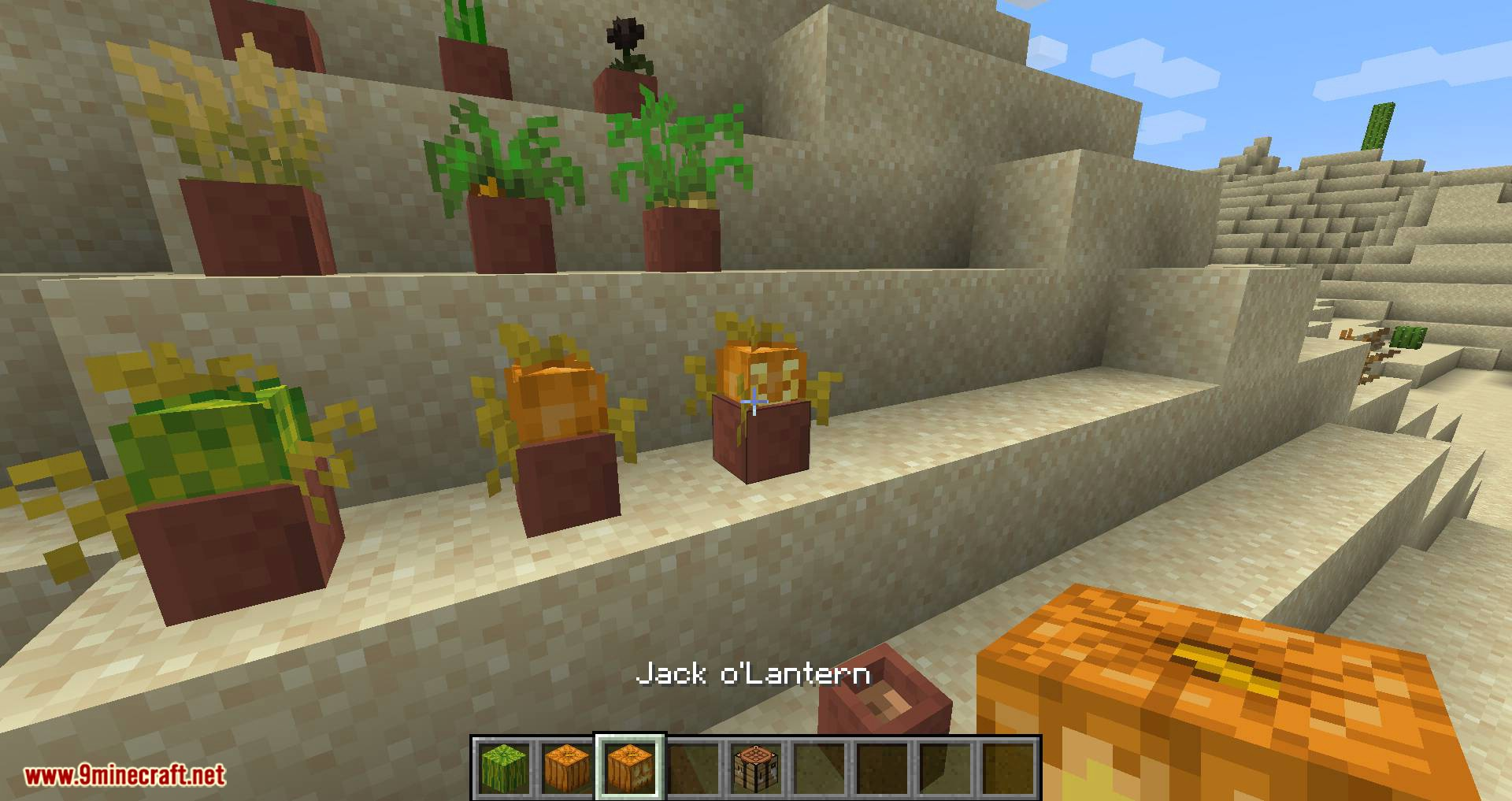 Florist mod for minecraft 05