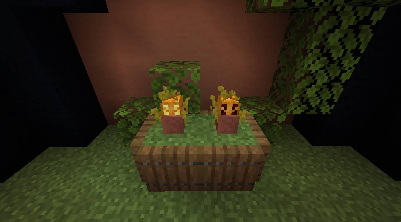 Florist mod for minecraft 22