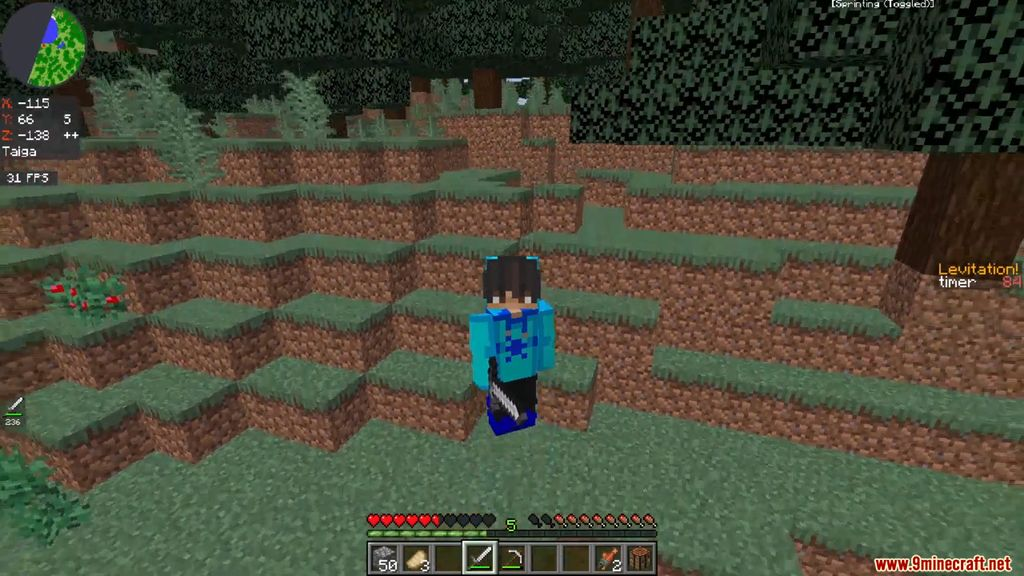 Minecraft BUT you levitate every 5 seconds Data Pack Screenshots (3)
