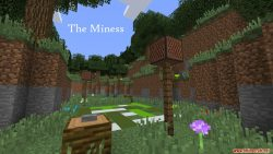 The Miness Map Thumbnail
