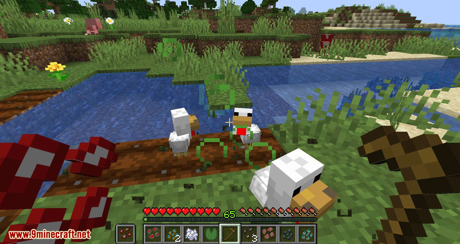 Animal Crops mod for minecraft 12