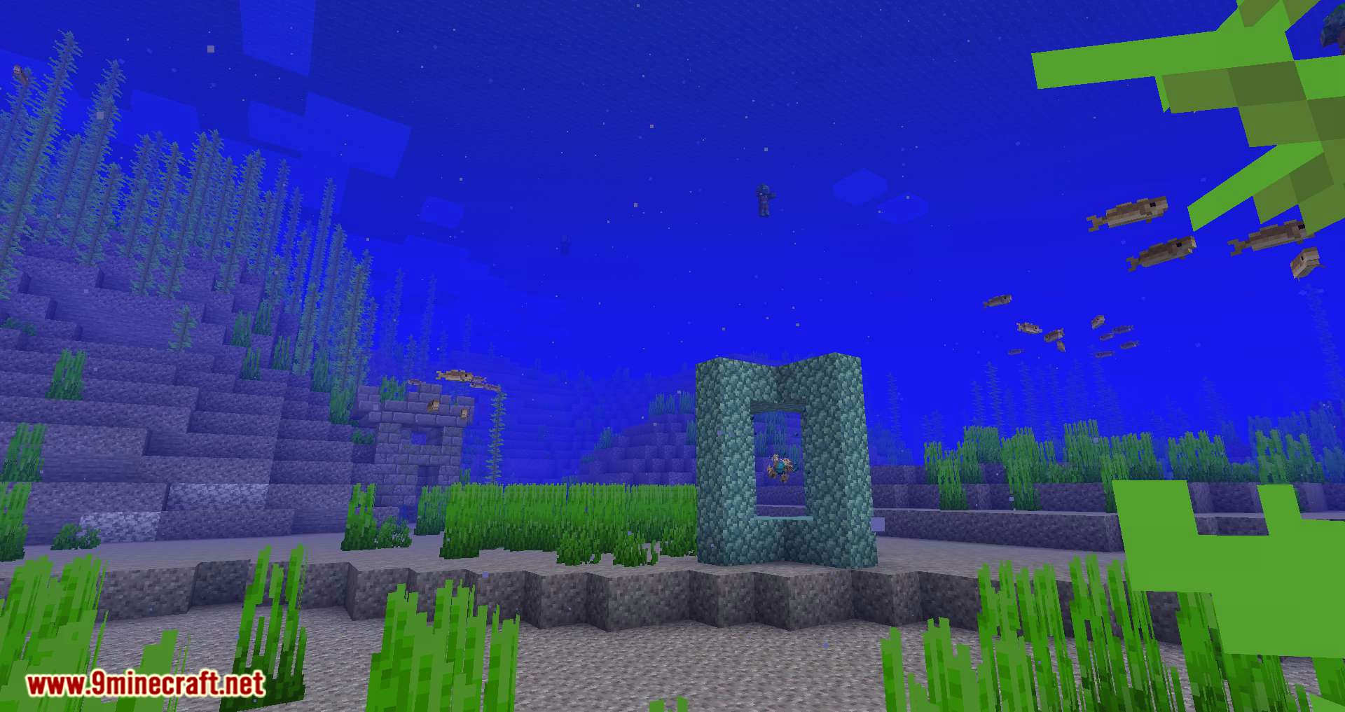 Conduits Prevent Drowned mod for minecraft 10
