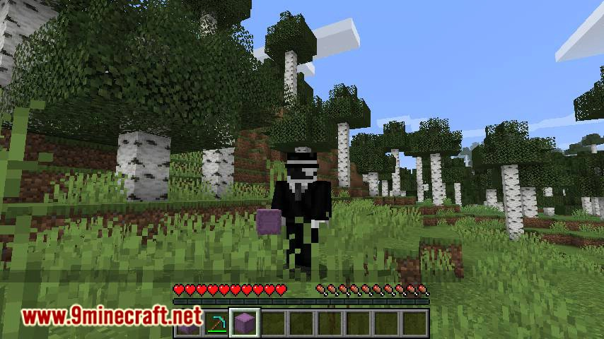 ShulkerBoxTooltip mod for minecraft 09