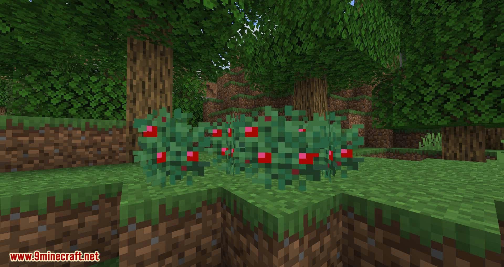 Walk Through Berries mod for minecraft 01
