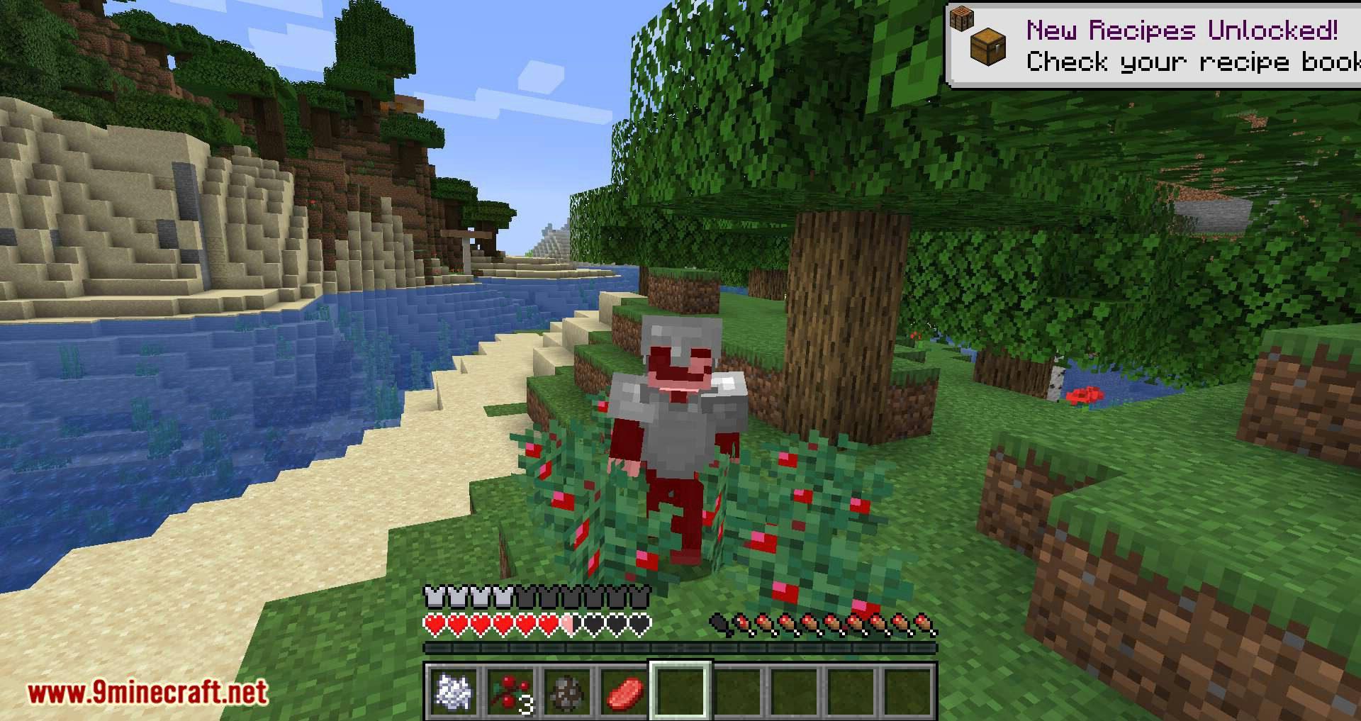 Walk Through Berries mod for minecraft 07