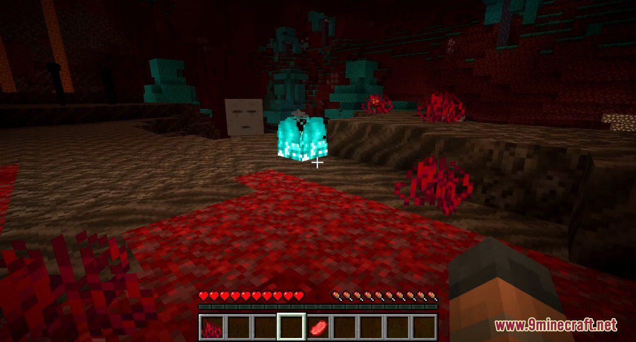 Minecraft 1.16 Snapshot 20w06a Screenshots 18