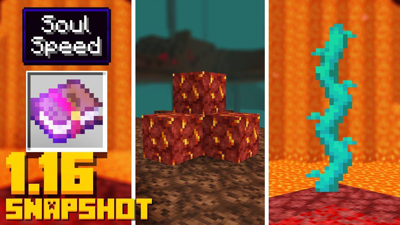 Minecraft 1.16 Snapshot 20w11a