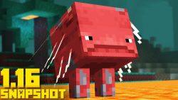 Minecraft 1.16 Snapshot 20w13a
