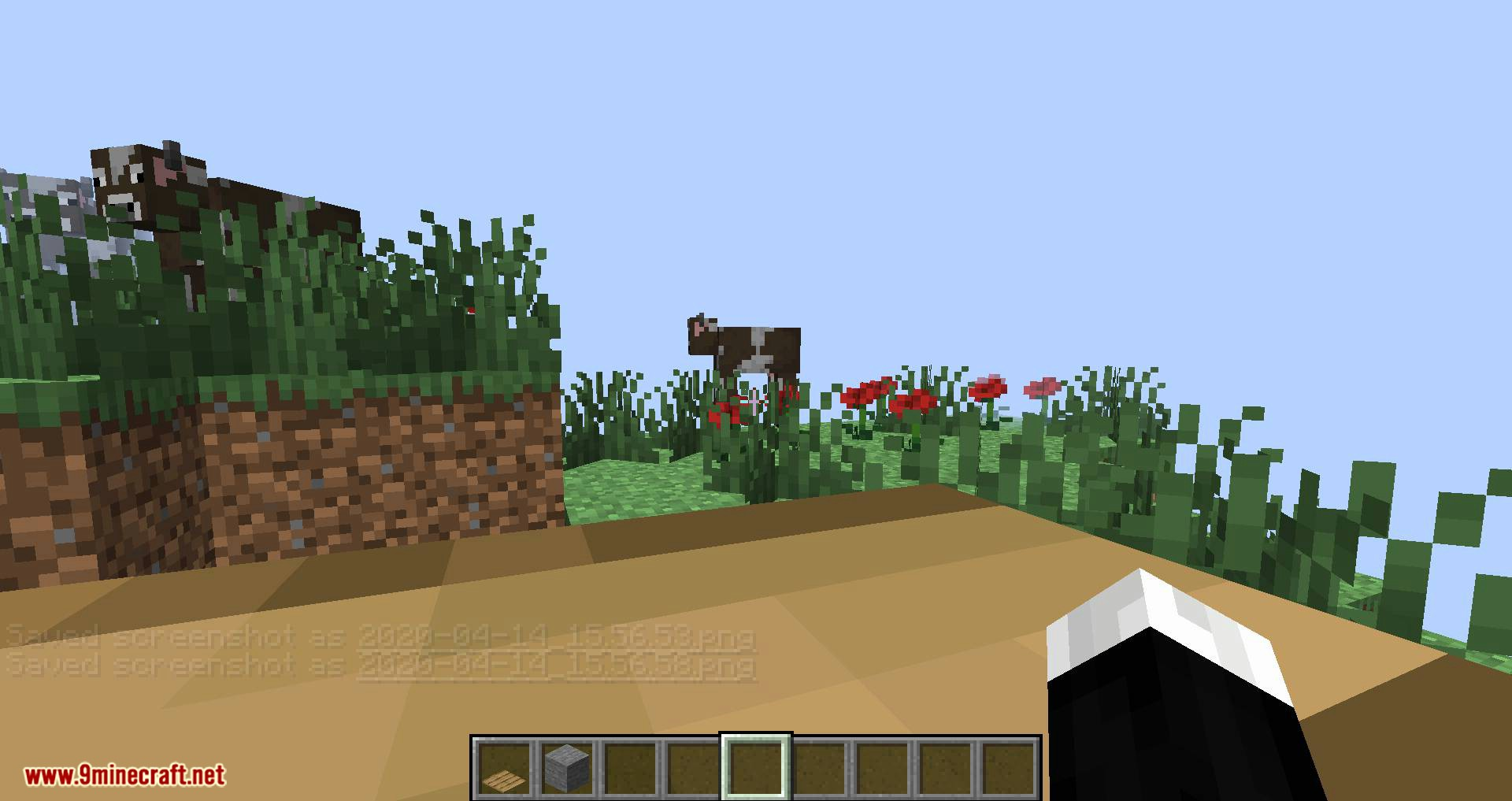 Chunk in a Globe mod for minecraft 03