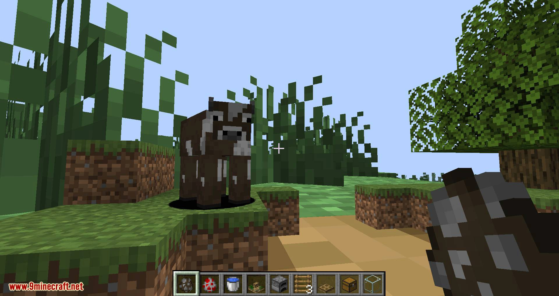 Chunk in a Globe mod for minecraft 13