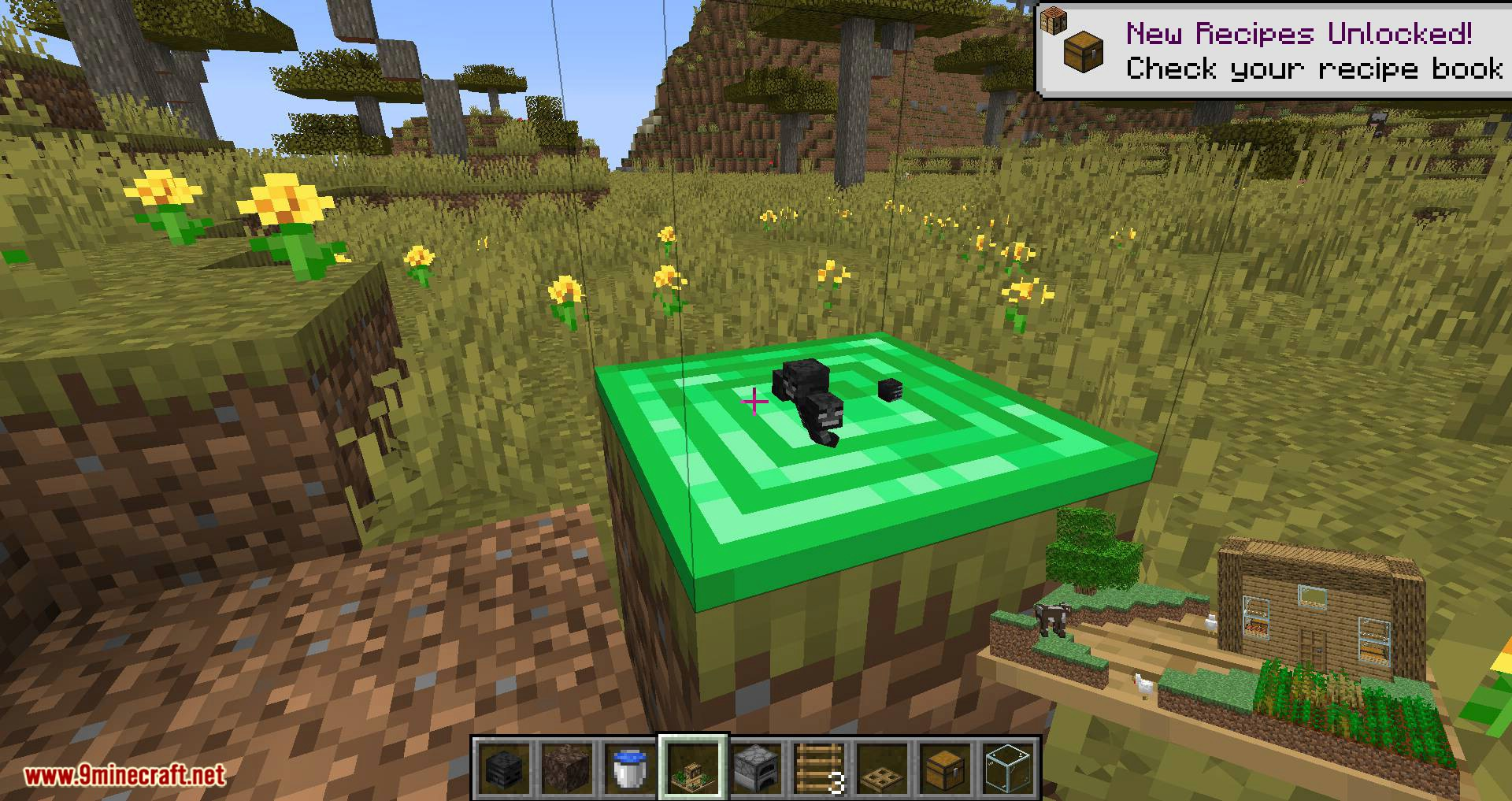 Chunk in a Globe mod for minecraft 15