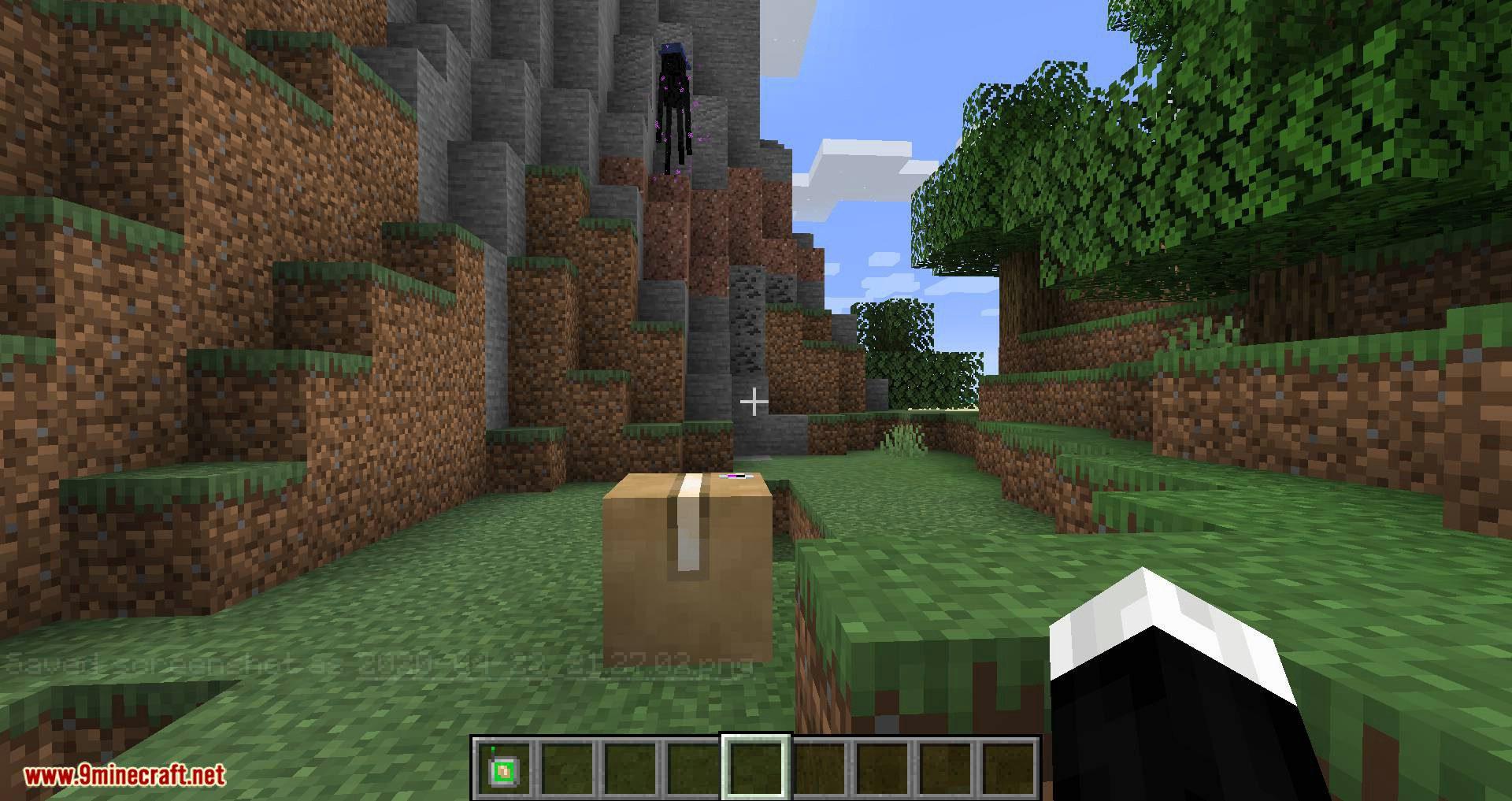 Ender Mail mod for minecraft 09