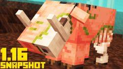Minecraft 1.16 Snapshot 20w14a