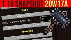 Minecraft 1.16 Snapshot 20w17a