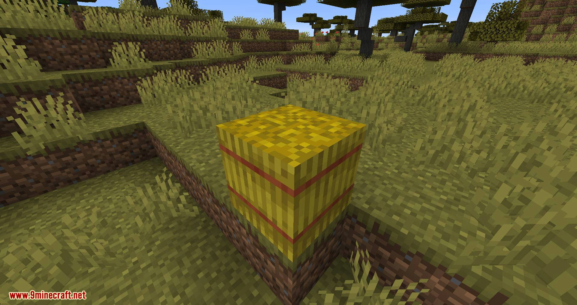 Softer Hay Bales mod for minecraft 01