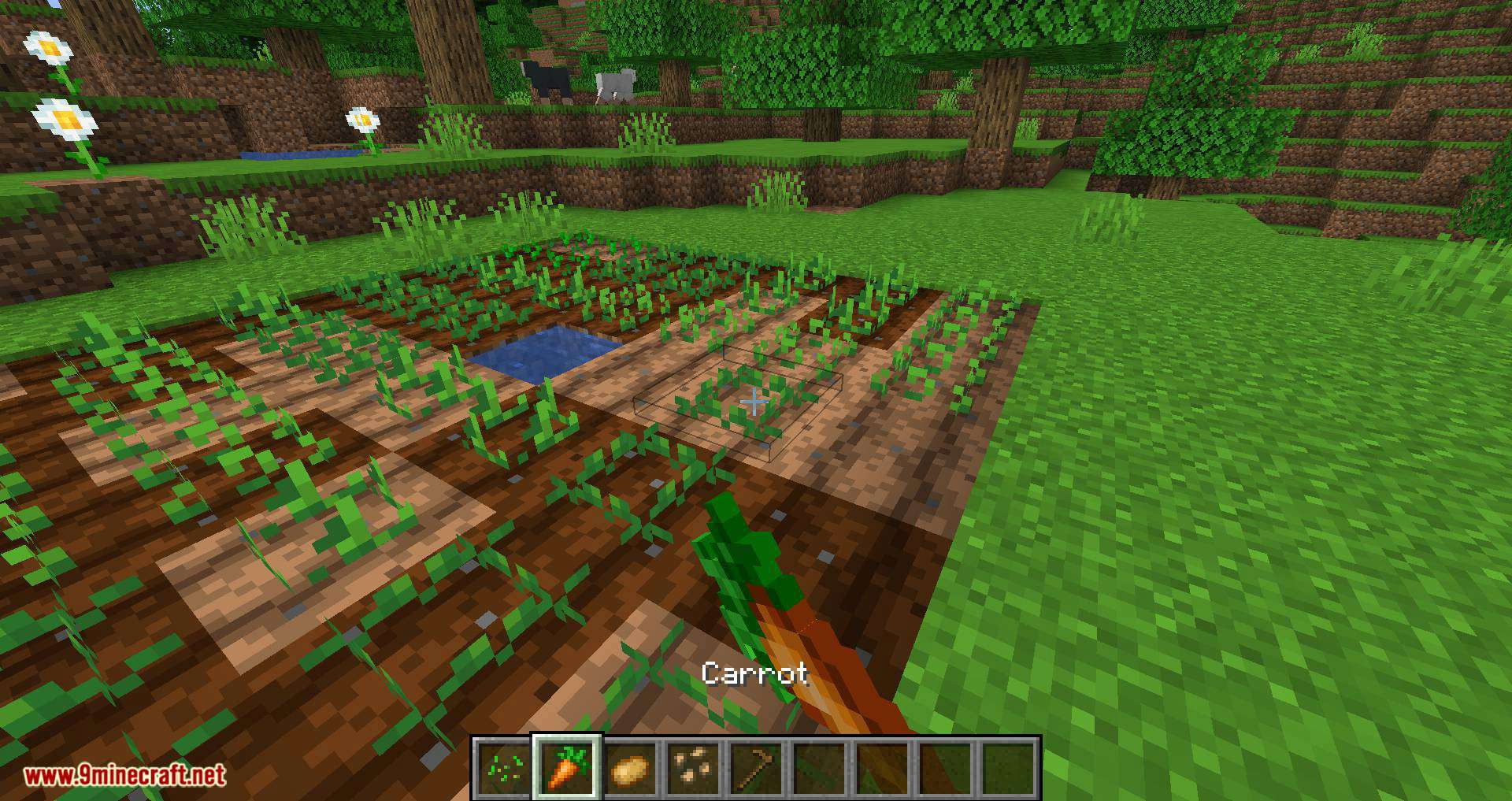 Replanting Crops mod for minecraft 01