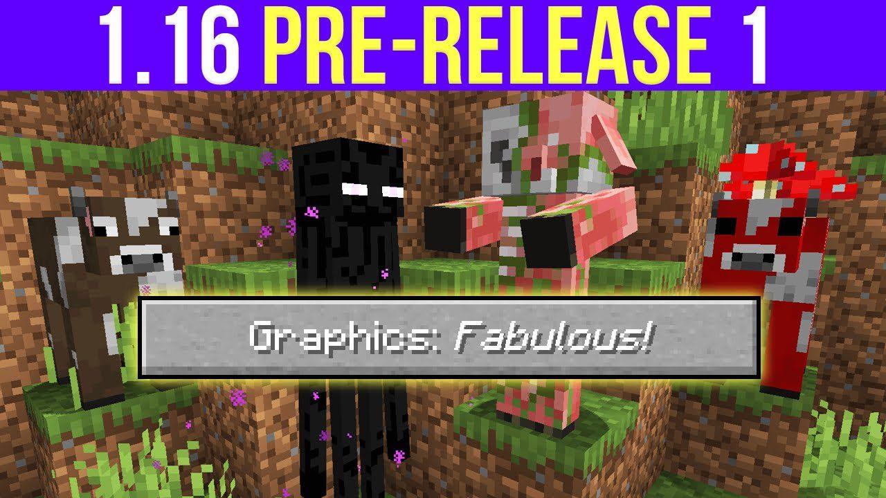Minecraft 1.16 Pre-Release 1