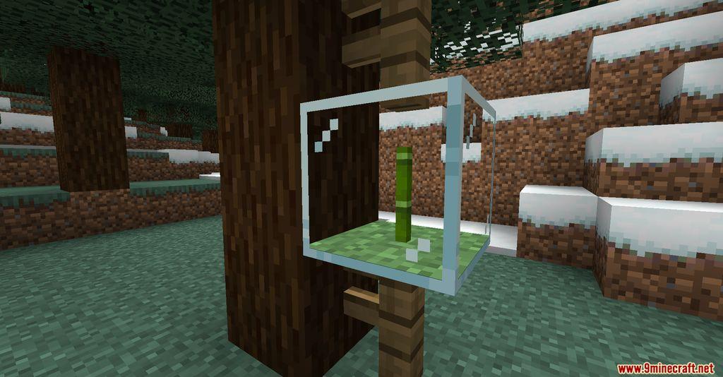 Plant in a Jar Mod Screenshots 2