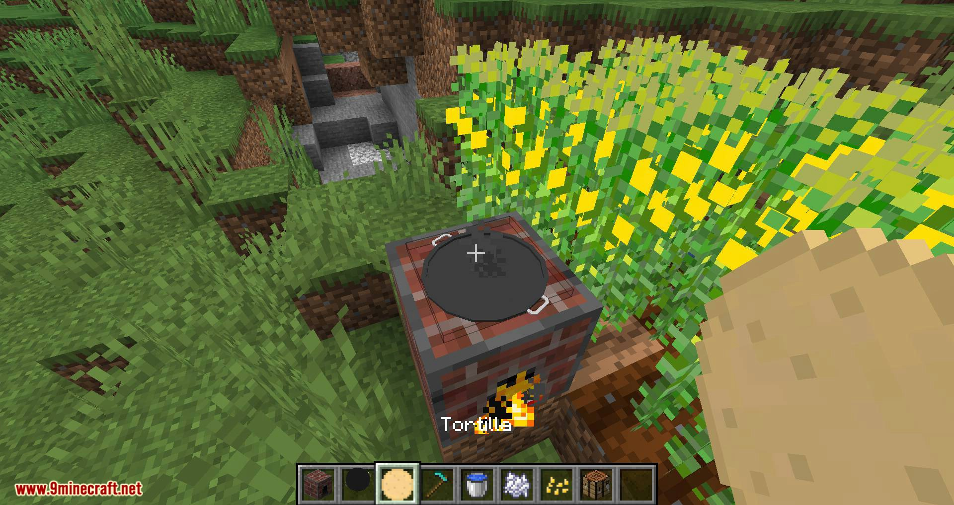 TacoCraft mod for minecraft 09