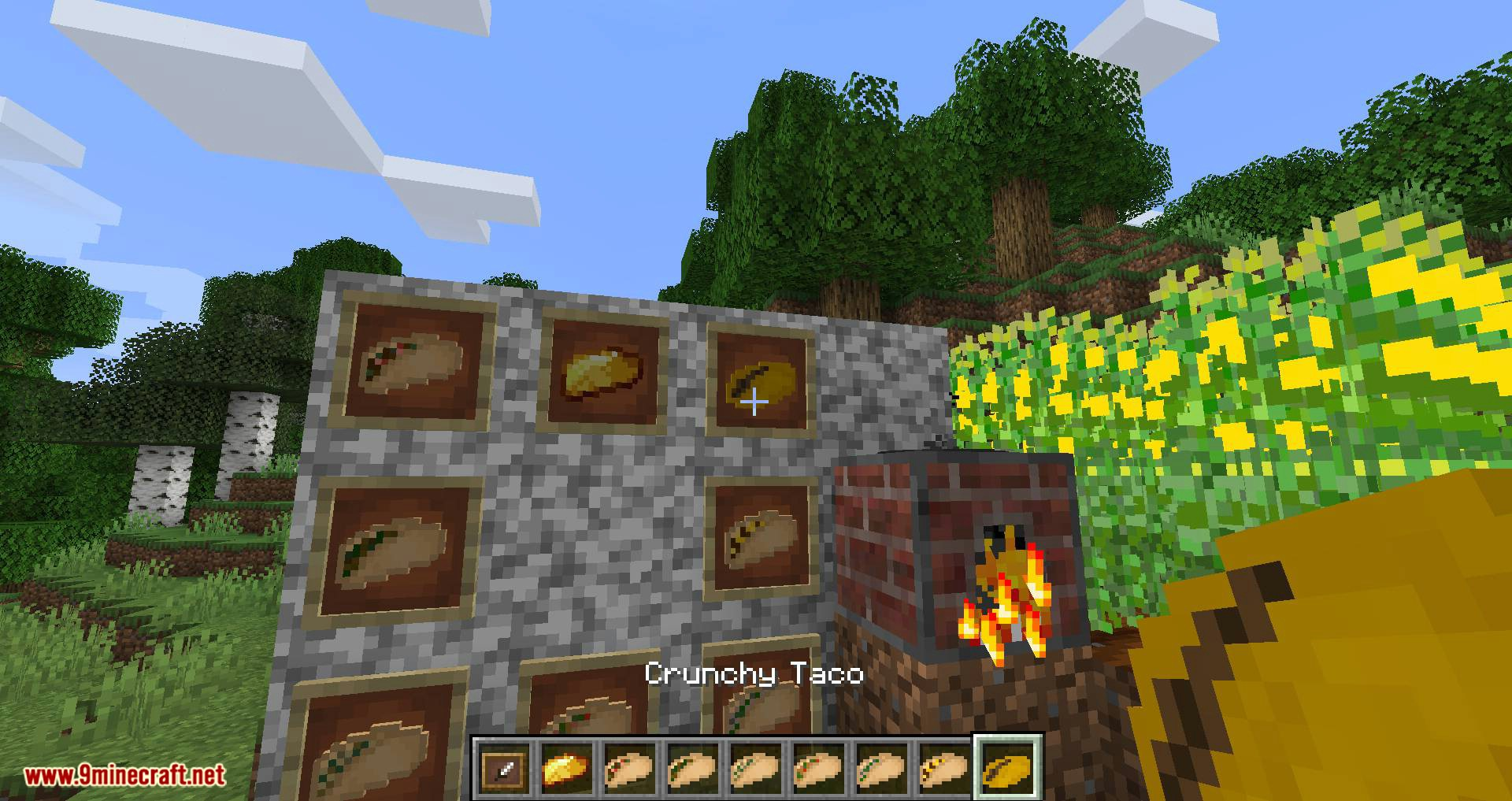TacoCraft mod for minecraft 10