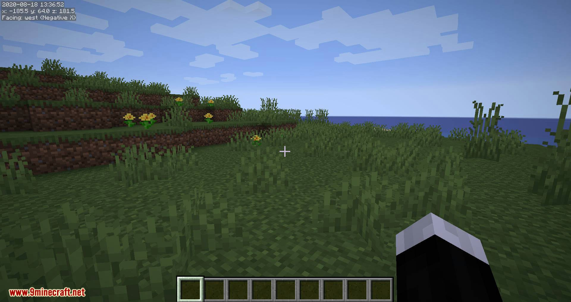MiniHUD mod for minecraft 01
