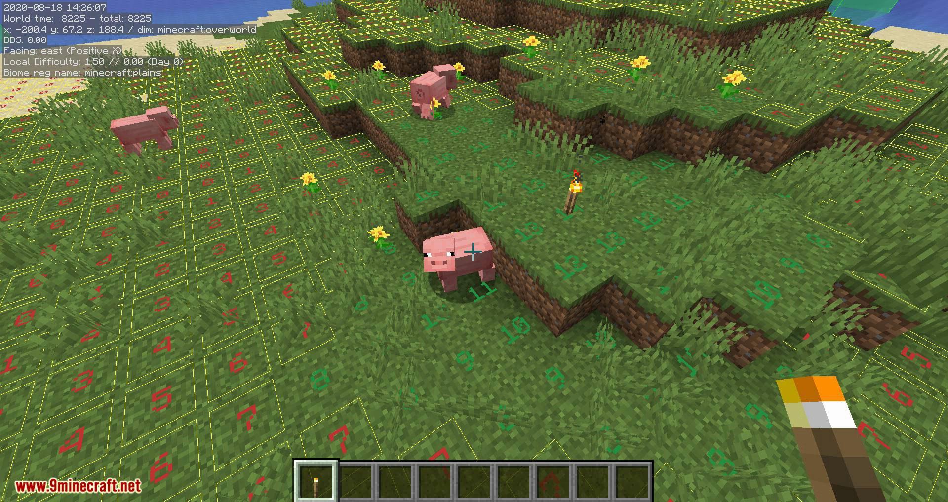 MiniHUD mod for minecraft 08