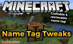 Name Tag Tweaks mod for minecraft logo