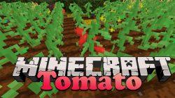 Tomato Mod