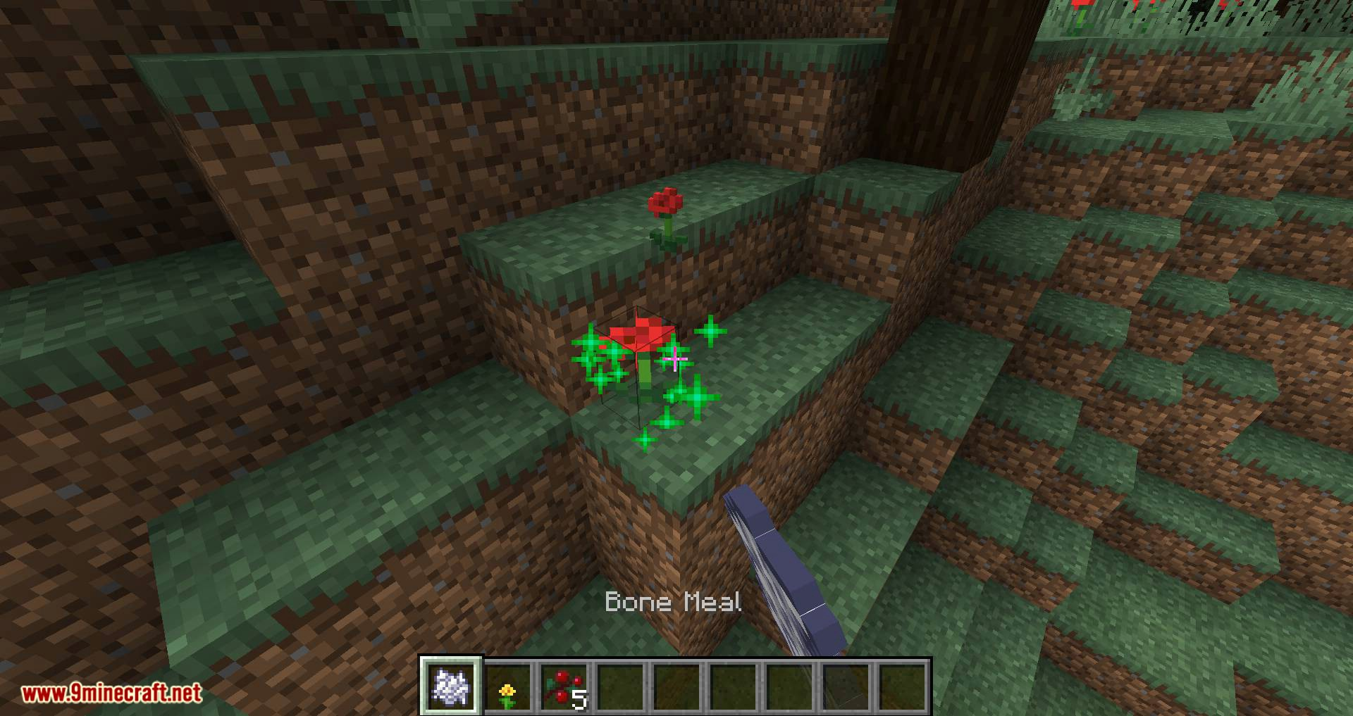 Flora Doubling mod for minecraft 06