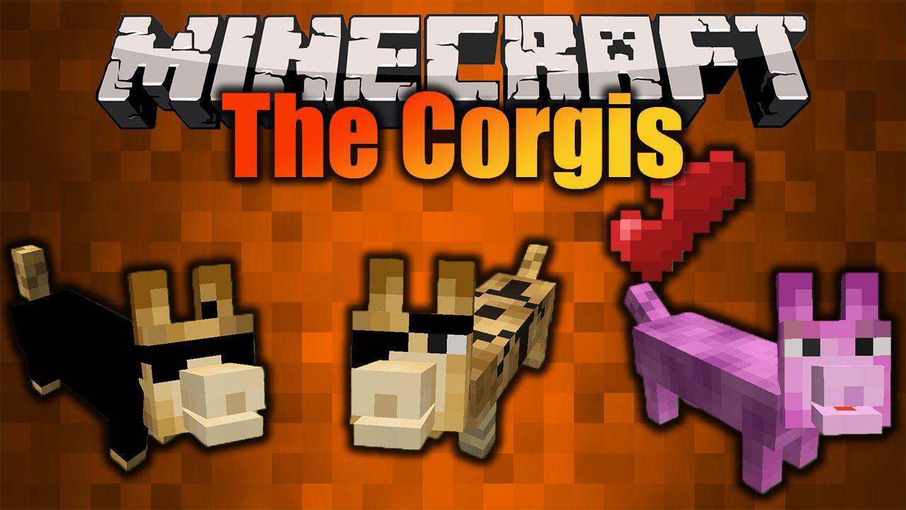 The Corgis Mod