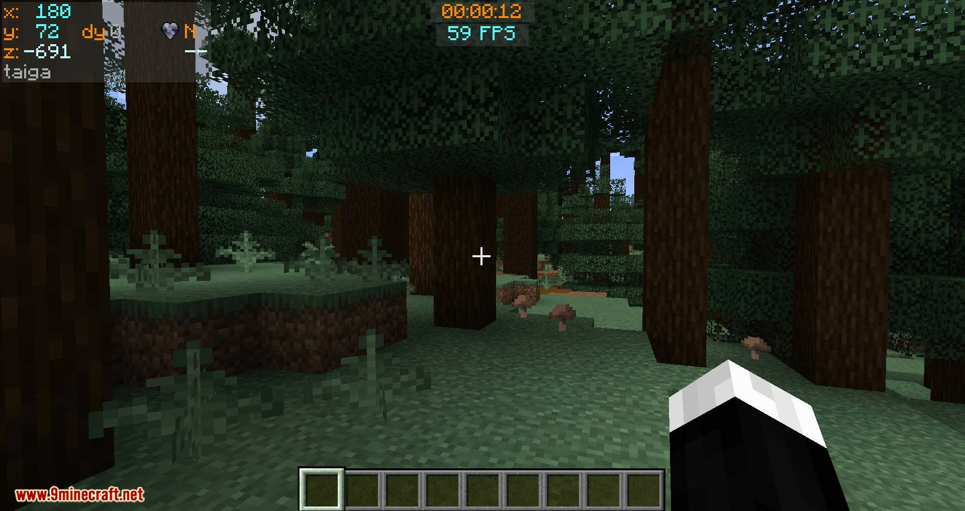 Batty_s Coordinates PLUS mod for minecraft 07