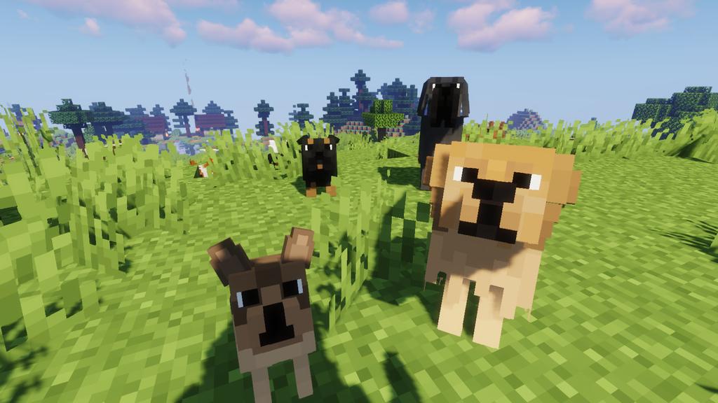 Better Dogs Resource Pack Screenshots 2