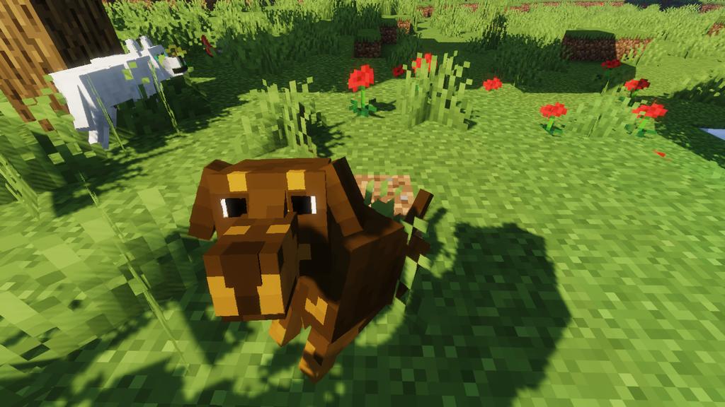 Better Dogs Resource Pack Screenshots 7