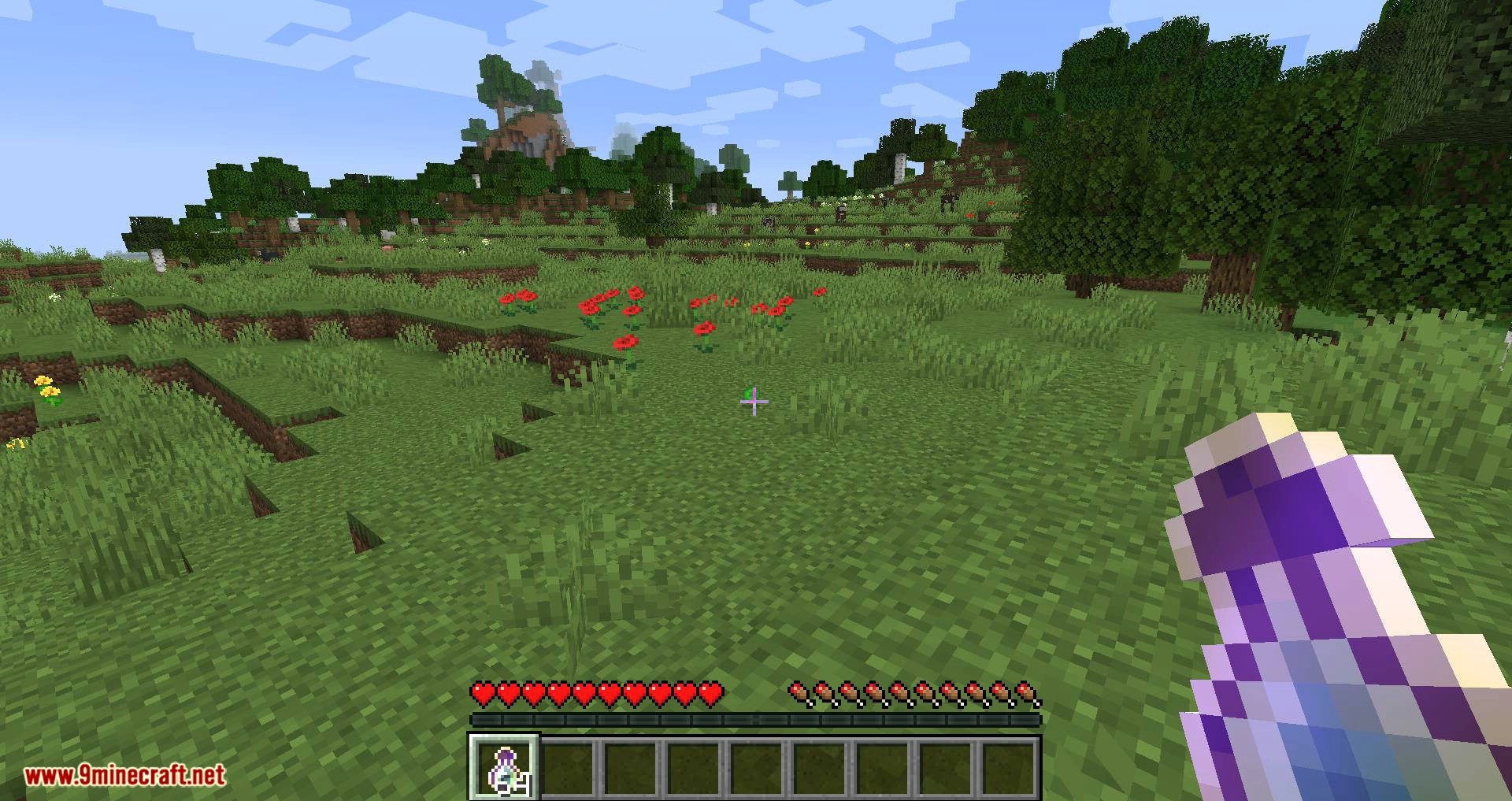 Fat Experience Orbs mod for minecraft 05