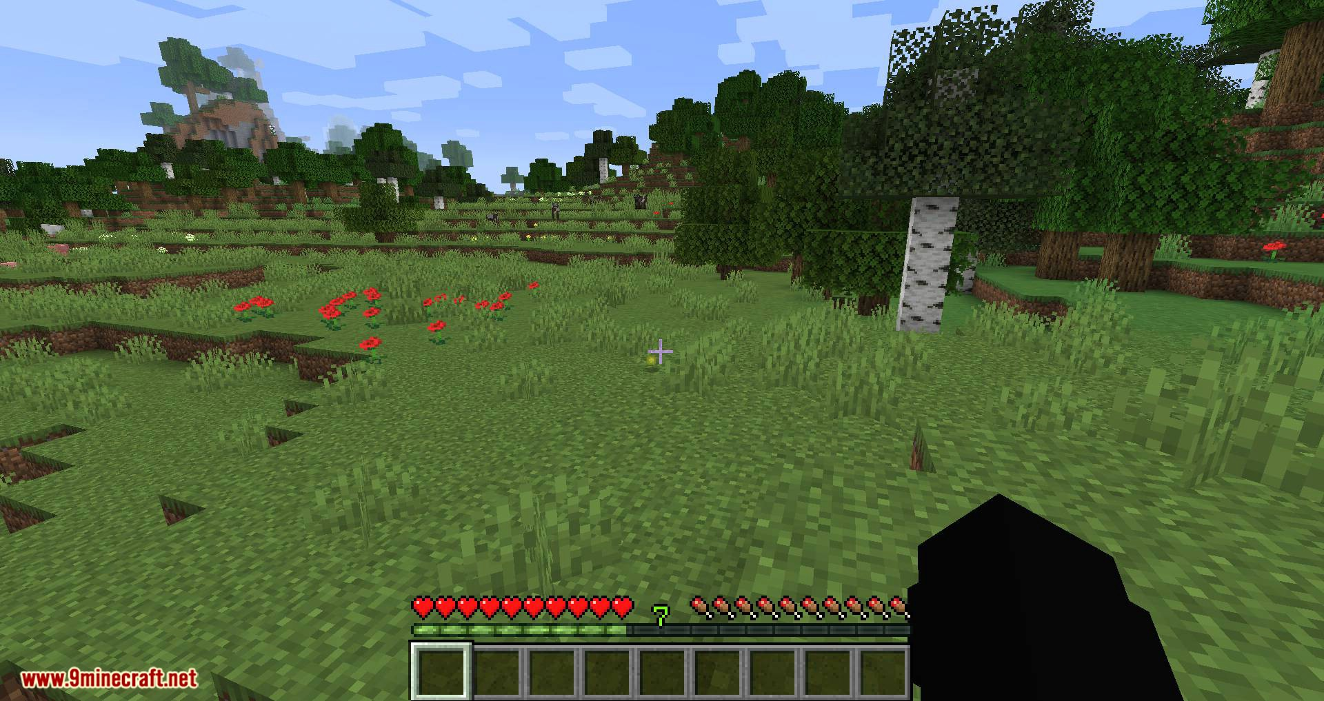 Fat Experience Orbs mod for minecraft 08