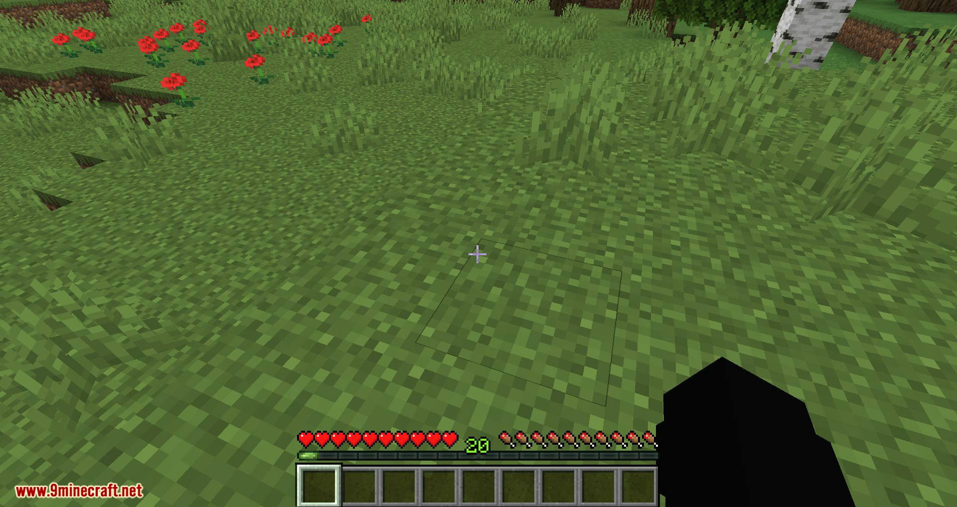 Fat Experience Orbs mod for minecraft 09