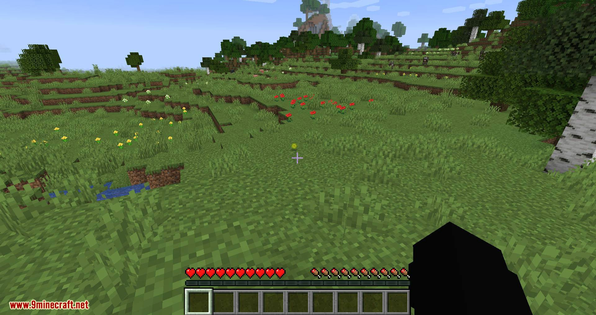 Fat Experience Orbs mod for minecraft 11